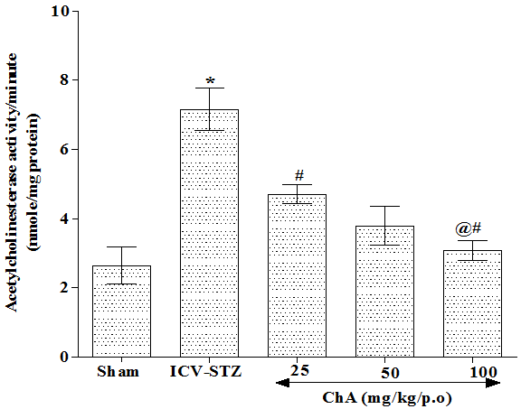 Figure 4: Effect of ChA on brain (hippocampus) Acetylcholinesterase activity in intracerebroventricular streptozotocin (ICV-STZ) treated rats.