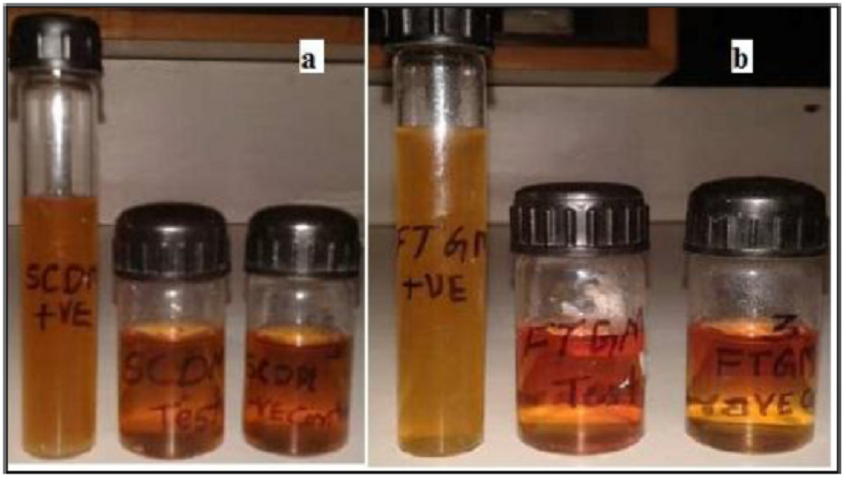 Figure 3: Sterility testing of optimized formulation in a)Soya bean casein digest media b) Fluid Thioglycolate medium