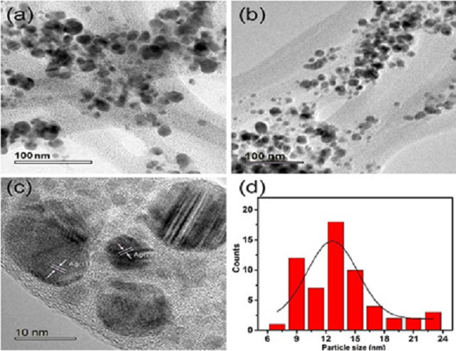 Figure 2: HR-TEM analysis of Ag nanoparticles demonstrating spherical in shape at different magnifications (a)(b)100nm (c) 10nm (d) average size ranging from 12-13nm