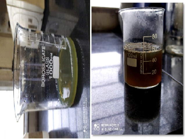 Figure 1: a) Mixture of AgNO3 solution and leaf extract. b) Synthesis of AgNP's and colour change of mixture after microwave irradiation
